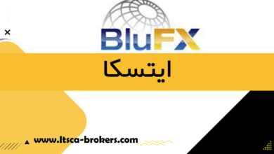 شرکت BluFX